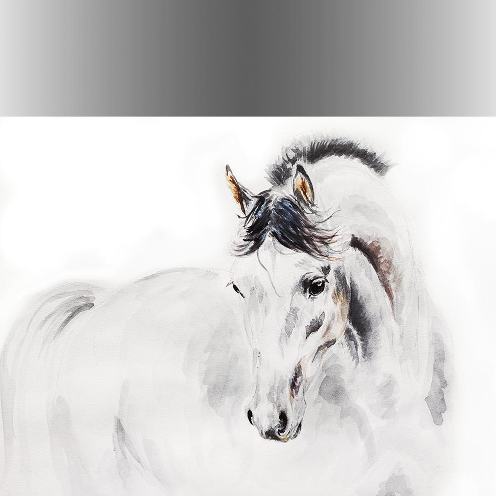 πίνακες διακόσμησης ζώα